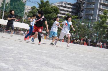 H29_tai_ (630)